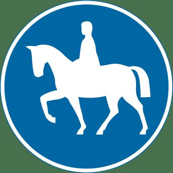 nytt körkort (8)