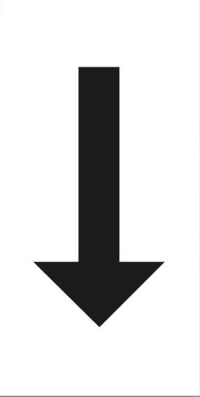 t11-2